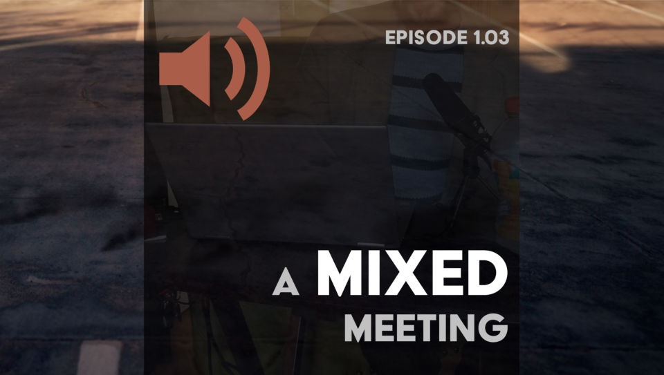 Episode 3: A mixed meeting feature image